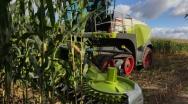 Technologia SHREDLAGE – nowy sposób zbioru kiszonki po okresie suszy